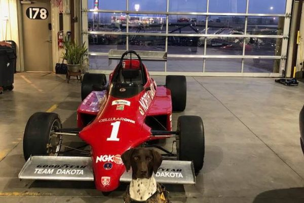 Dakota the Dog and the Skip Barber Saab